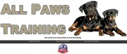 Boston All Paws Training | Veteran Owned Canine Obedience Training Business