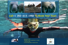 Aquavision Manatee Tours | Veteran Owned Eco Tours Business