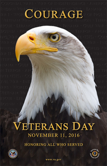 This year's (2016) Department of Veterans Affairs Veterans Day Poster