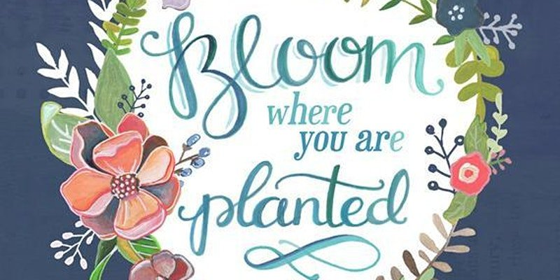 Military Wives Connect Bloom Event | Mount Ararat Church | Stafford Virginia